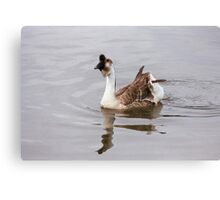On the Ripples Canvas Print