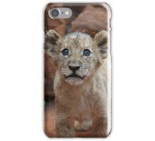 Cutest Lion Cub Ever iPhone Case/Skin