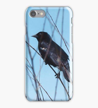 Resting iPhone Case/Skin
