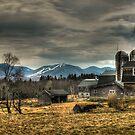 Alpine Farm Spring by Carrie Blackwood