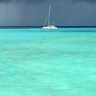 There's a Storm Brewing! Le Tahaa Island by Honor Kyne