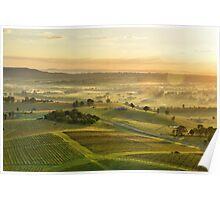 Vineyards of Hunter Valley Poster