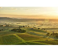Vineyards of Hunter Valley Photographic Print