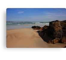Ards Forest Park Seaside Canvas Print