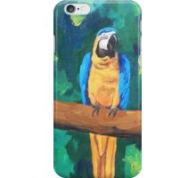 Blue Yellow Macaw Parrot - iPhone iPod iPad iPhone Case/Skin