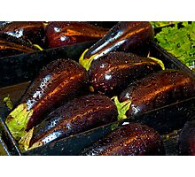 Eggplants Photographic Print