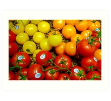 Multi Colored Tomatoes Art Print