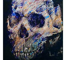 Ultraviolet Skull Photographic Print