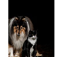 Best of Friends Photographic Print