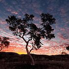 Pilbara  Sunset by Robert Armitage