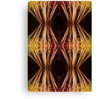 Fireworks Abstract 20 Canvas Print