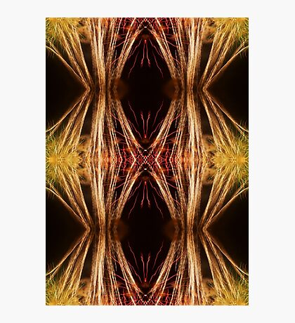 Fireworks Abstract 20 Photographic Print