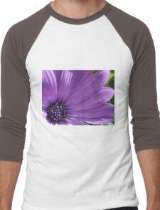 Gentle Daisy Men's Baseball ¾ T-Shirt