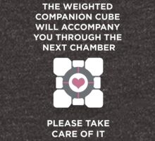Portal Companion Cube by Jammers231