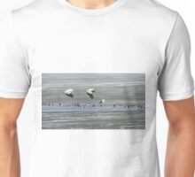 First Arrivals 2014-1 Unisex T-Shirt