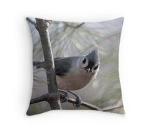 Tufted titmouse perched in a pine tree Throw Pillow
