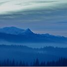 Views 5442 *** Winter landscape  - Tatra Mountains . Poland .  tribute to Gershwin plays Gershwin: Rhapsody in Blue . Made in Andrzej Goszcz .  thanks for viewing !. by © Andrzej Goszcz,M.D. Ph.D