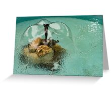 Flower Fountain - Whimsical Water Feature to Delight You Greeting Card