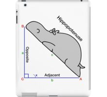 Math Humor iPad Case/Skin