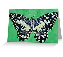 Butterfly #1 Greeting Card
