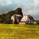 Farm - Ohio - Broken dreams by Mike  Savad