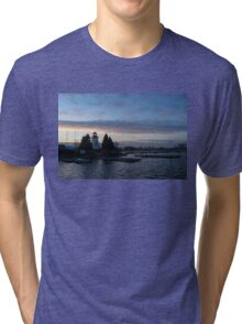 Blue and Rose Serenity Tri-blend T-Shirt