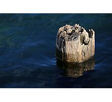Single Old Piling 2 Photographic Print