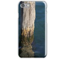Single Old Piling 5 iPhone Case/Skin