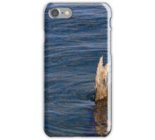 Single Old Piling Horizontal iPhone Case/Skin