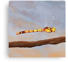 Powerful Dragonfly on a Late Afternoon Sky Canvas Print