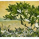 Fern-leafed Banksia by Karyn Fendley