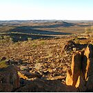 View to the Barrier Ranges from the Living Desert Reserve by Marilyn Harris