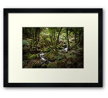 Cement Creek - Warburton Framed Print