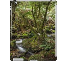 Cement Creek - Warburton iPad Case/Skin