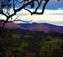 Farm Sunset by D-GaP
