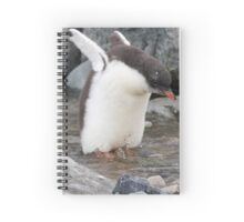 "Gentoo Penguin chick ~ ""Practise Makes Perfect"" Spiral Notebook"