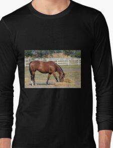 horse eating hay Long Sleeve T-Shirt