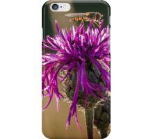 Hoverfly Macro iPhone Case/Skin