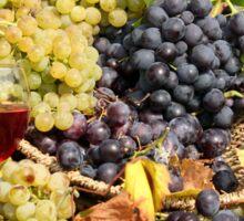 grape and wine  Sticker