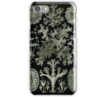 Haeckel Lichenes iPhone Case/Skin
