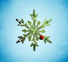 Winter Holidays Pine Snowflake by Boriana Giormova