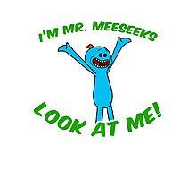 Hey I'm Mr. Meeseeks Look At Me! Photographic Print