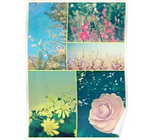 Spring Flowers Collage Plum Blossom Aster Dogwood Camellia Poster