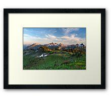 Tatoosh Range Wildflowers from Mazama Ridge Framed Print