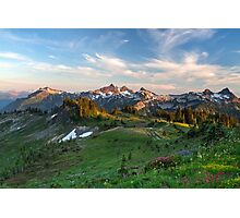 Tatoosh Range Wildflowers from Mazama Ridge Photographic Print
