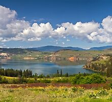 Kalamalka Provincial Park Panoramic by Michael Russell