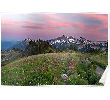 Mazama Ridge Wildflowers Poster