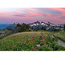 Mazama Ridge Wildflowers Photographic Print