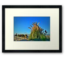The Beach at Coronado, California Framed Print
