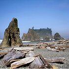 Ruby Beach Morning by debidabble